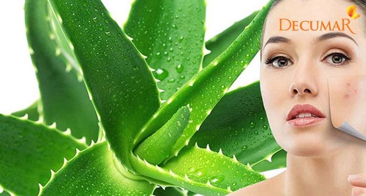 Nha đam cũng là một nguyên liệu cải thiện thâm da, sẹo rỗ một cách hiệu quả