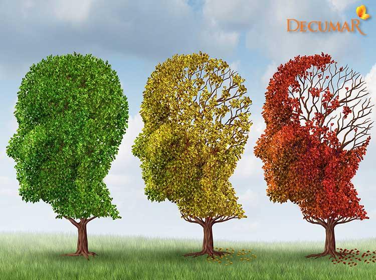 Cây Alzheimer