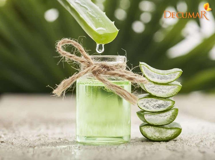 Nha đam giúp trị sẹo thâm, tái tạo và phục hồi da