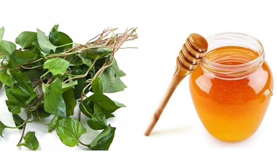 mật ong và rau diếp cá