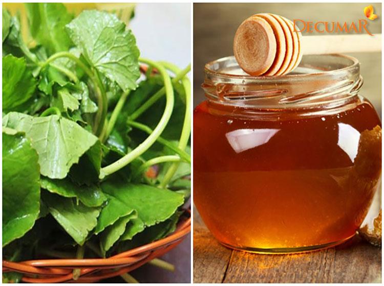 Công thức trị mụn rau má và mật ong