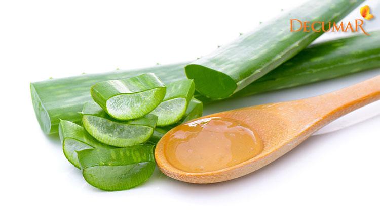 Nha đam với nhiều dưỡng chất giúp trị thâm mụn và dưỡng da