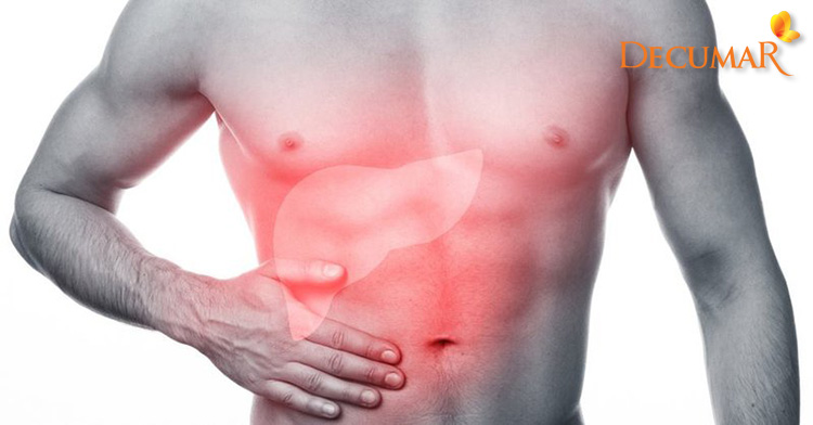 """Những vấn đề về gan cũng sẽ khiến cho """"khổ chủ"""" phải gánh chịu thêm mụn bọc ở trên da"""
