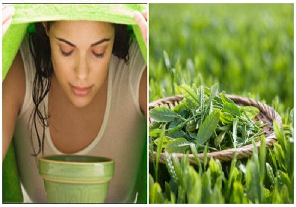 Xông hơi trị mụn ẩn bằng trà xanh
