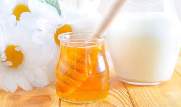 Mật ong và sữa chua