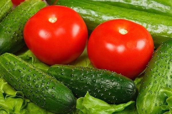 Cà chua và dưa chuột