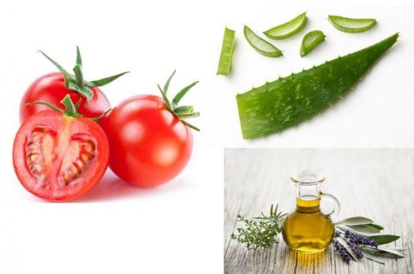 Cà chua và nha đam